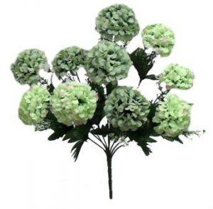 "Green 16.5"" hydrangea Bush x  10"