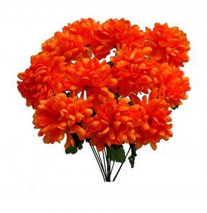 "Orange 22"" tall mum Bush x 12"