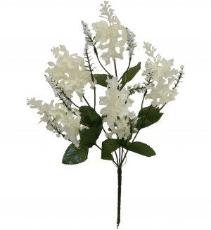 "Cream 15"" lilac Bush x 5"