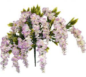 """Lavender 39"""" tall wisteria Bush x 15"""