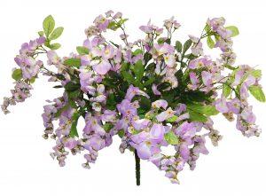 """Lavender 32"""" tall wisteria Bush x 24"""