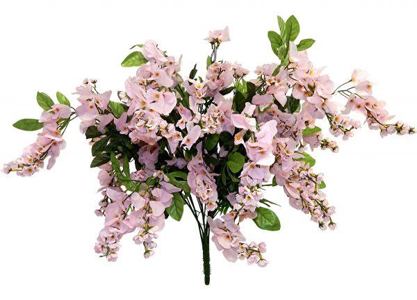 """Pink 32"""" tall wisteria Bush x 24"""