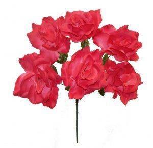 "Fuchsia 17"" open rose Bush x 6"