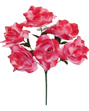 "Pink 17"" open rose Bush x 6"