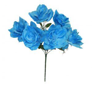 "Turquoise 17"" open rose Bush x 6"