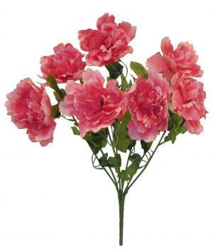 "Pink 19"" peony Bush x 7"