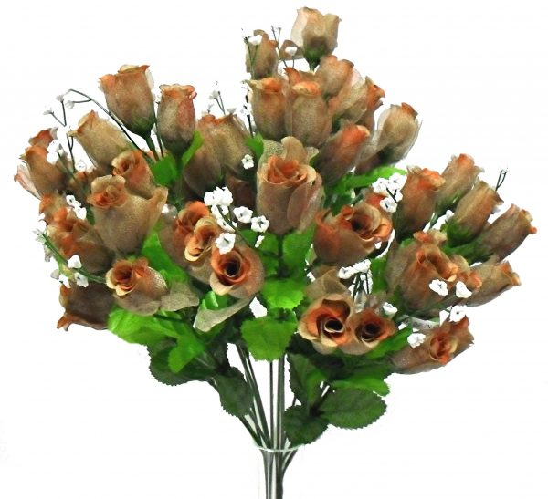 Brown Gauze rose Bud Bush x 14