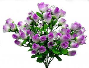 Lavender Gauze rose Bud Bush x 14
