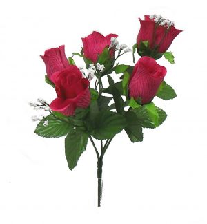 Fuchsia M P rose Bud Bush x 5