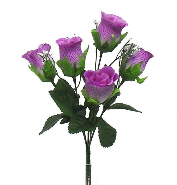 Lavender M P rose Bud Bush x 5