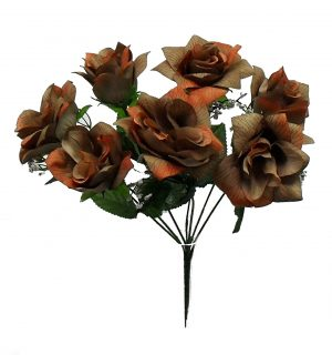 "Brown 14"" tall M P open rose Bush x 7"