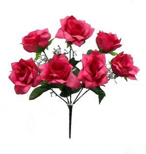 "Fuchsia 14"" tall M P open rose Bush x 7"