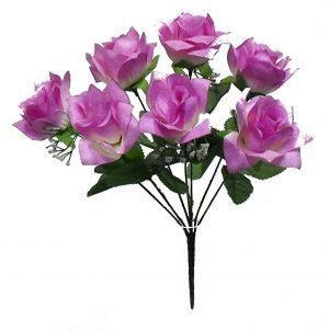 "Lavender 14"" tall M P open rose Bush x 7"