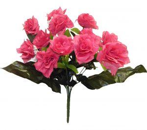 Fuchsia Open Rose x 12