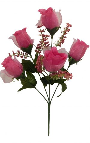 Fuchsia Sheer rose Bud Bush x 5