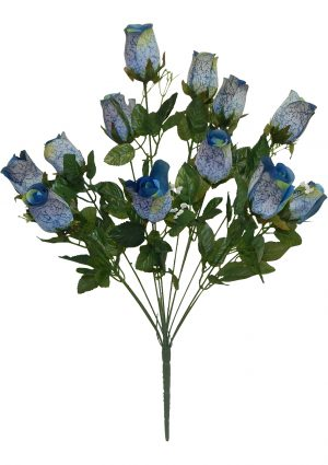 Blue Printing rose Bud Bush with 12 rose Buds