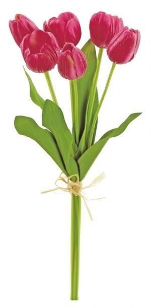 Mixed Small Tulip Bundle x6