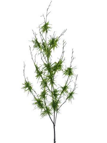 """36"""" Moss Branch x2Green"""