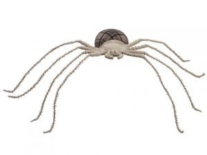 """11"""" Spider Black Beige"""
