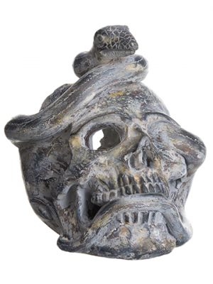 """8"""" Skull With Snake Antique Gray"""