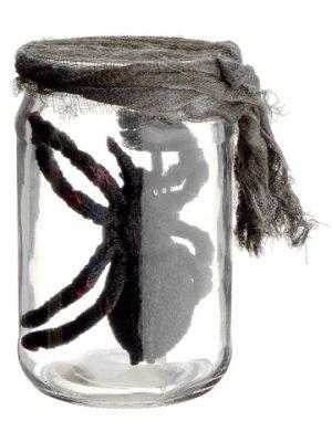"5.5"" Glass Jar w/Spider Black"