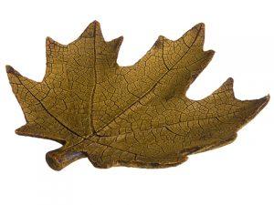 """6.5""""W x 7""""L Maple Leaf Plate Light Bworn"""