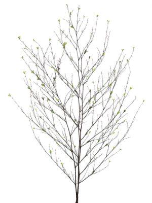"48"" Bamboo Branch Bundle x3Green"