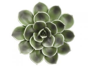 "12"" Echeveria Wall Decor Green Gray"