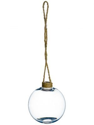 "3.1"" Hanging Planter Clear"