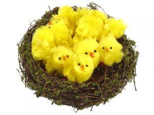 "5.5"" Bird's Nest With Chicks Yellow"