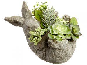 """8"""" Succulent GardenArrangement in Cement BunnyPlanter Green Gray"""