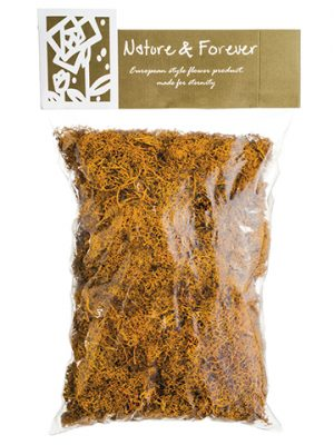 "10.5"" Assorted Preserved Reindeer Moss in Bag (170 Grams/Bag) Mustard"