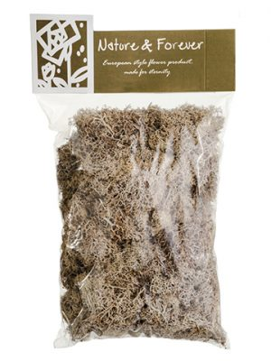 "10.5"" Assorted Preserved Reindeer Moss in Bag (170 Grams/Bag) Natural Beige"