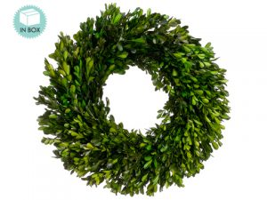 "17"" Preserved Boxwood Wreath Green"