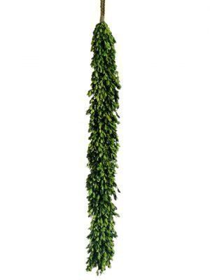 "45"" Preserved Boxwood Garland Green"