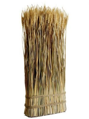 "23.6"" Preserved Wheat/Grass Standing Twig Natural"