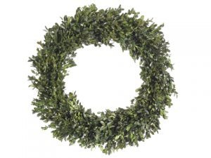 "22"" Preserved Boxwood Wreath Green"