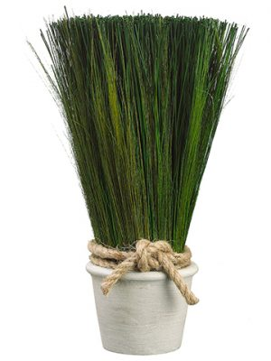 "16.9"" Preserved Grass inTerra Cotta PotGreen"