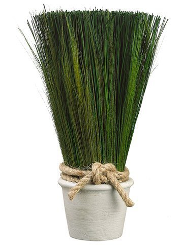 "16.9"" Preserved Grass in Terra Cotta Pot Green"