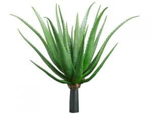 """26"""" Agave Plant Green"""