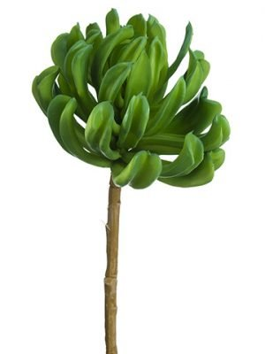 "14.5""H x 7""D Soft Plastic Aeonium Spray Green"