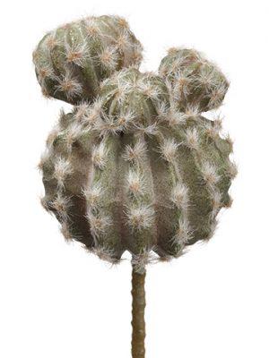 """9.5"""" Barrel Cactus Pick Green"""