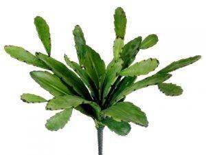 "17"" Cactus Plant Green"
