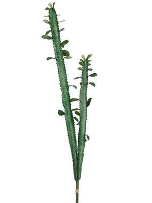 """36"""" Cactus Bundle x2 Green"""