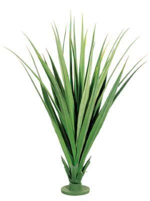 "55"" Dracaena Draco Base Plant with 31 Leaves Two Tone Green"