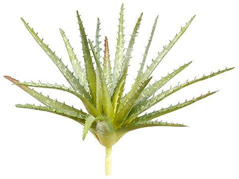 "11"" Soft Aloe Pick Green"