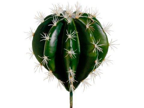 "10"" Cactus Pick Green"