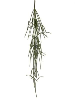 "31"" Hanging Pencil CactusSprayGreen"