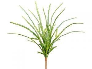 "13"" Pencil Cactus Bush Green"