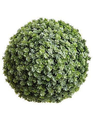 "11"" Sedum Orb Green"